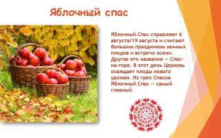 Яблочный спас — второй спас: 13 фактов из истории появления праздника