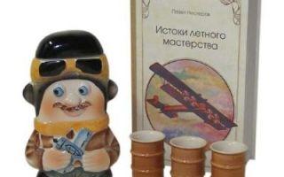 Подарок летчику: 13 вариантов, что подарить гражданскому и военному летчику