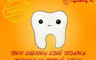 13 идей, что подарить ребенку на первый зубик