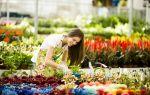 13 идей, что подарить любителю цветов, садоводу или флористу