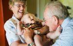13 замечательных подарков дедушке с бабушкой от городских внуков